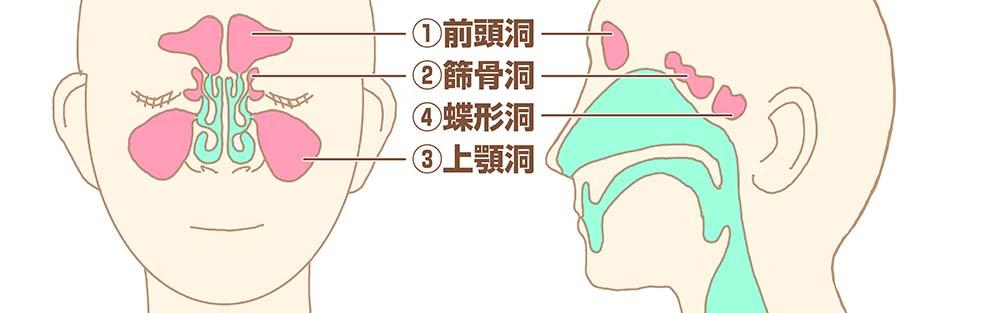 自宅で副鼻腔炎対策